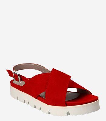 Lüke Schuhe Damenschuhe P254
